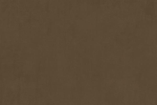 CARABU-19