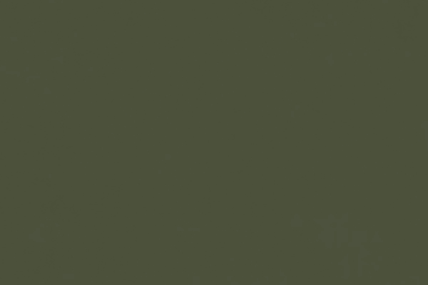 CARABU-49