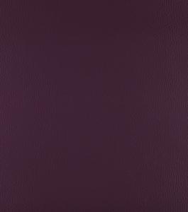 Aubergine – Purple