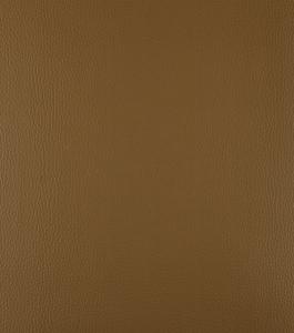 Camel – Brown