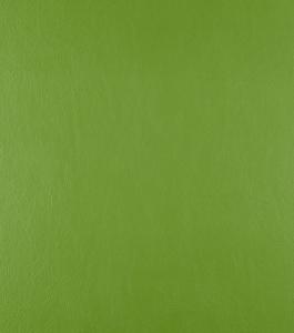 Casco Apple Green