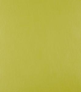 Casco Olive – Green