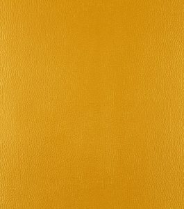 Gold Medal – Yellow